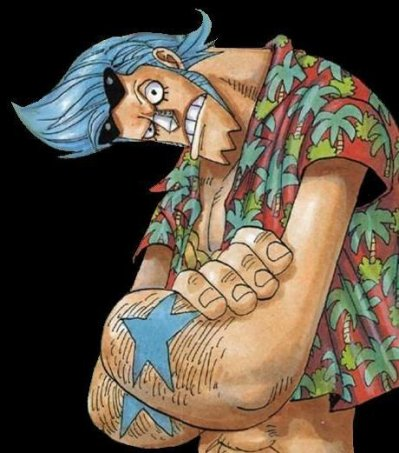OnePieceTheReference Franky