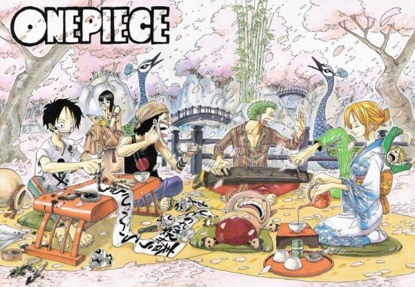OnePieceTheReference Sommaire