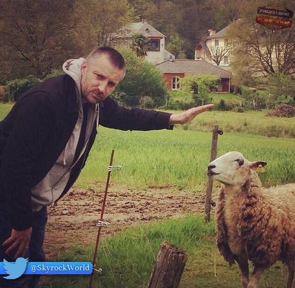 Une petite photo de Fred avec un mouton !