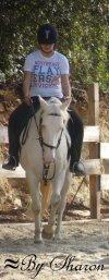 L'amour d'un cheval ne s'achete pas : Elle se gagne !  ღ