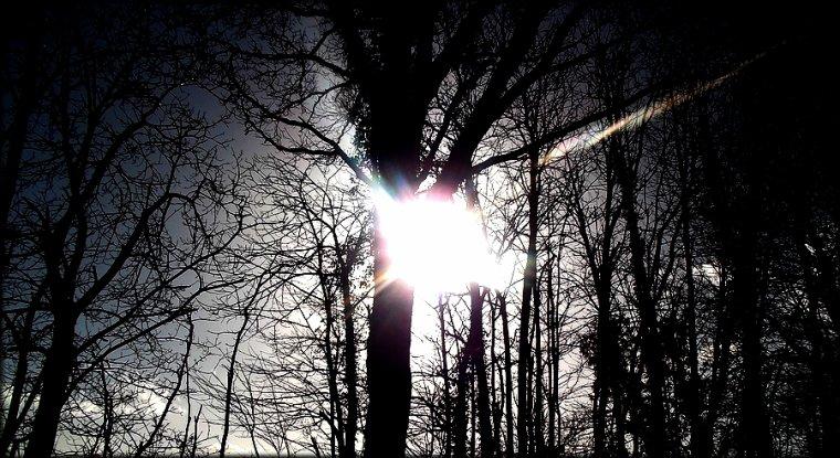 - -  Tout d'un coup, on rencontre la lumière qui illumine nos jours. - -