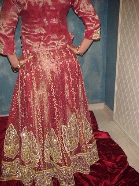 Sari Indien Rouge&Rose Irise