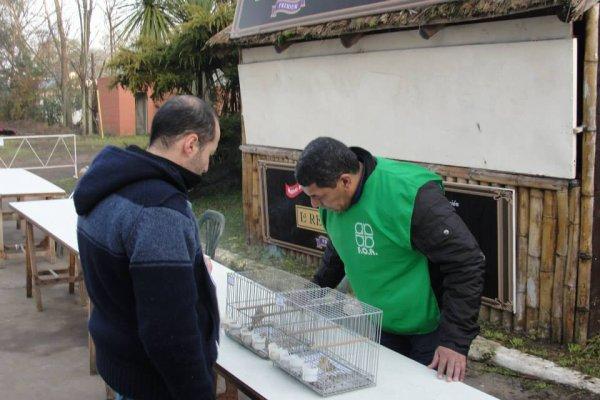 Campeonato Argentino de Ornitología FOA 2014