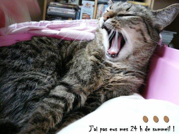 L'action de Juliette ♥♥♥
