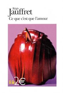 Régis Jauffret, Ce que c'est que l'amour