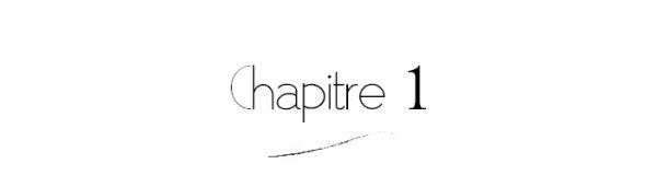 PLATFORM - Chapitre 1