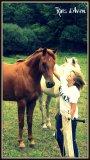 Photo de horses-Mell
