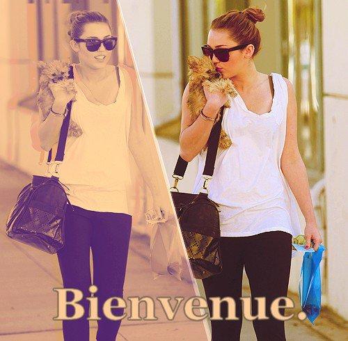 Bienvenue sur ton blog jeu.     Miley Cyrus sera la reine de ce blog.     Explications et NewsLetter.