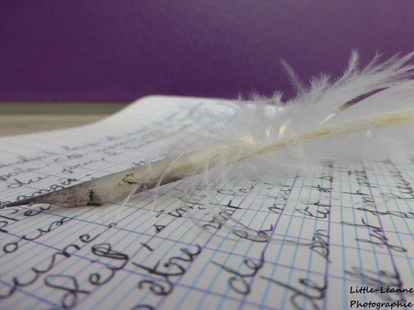 L'écriture est la porte de l'imaginaire