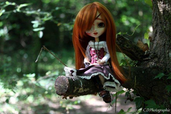 Une matinée en forêt
