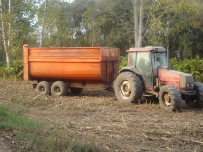 silagem de milho 2011