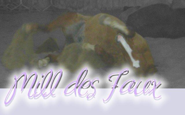 * . ♥ Mill . & . Léa ♥ . *