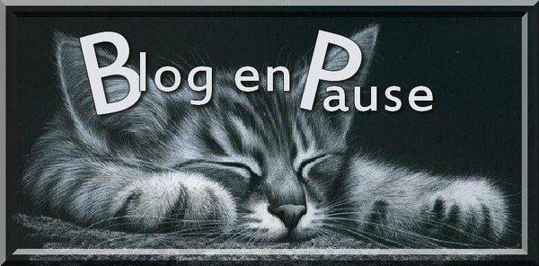Je déménage !!!!!!!!!!!!!!!!!!!!! blog en pause !!!!!!!!!!