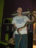 Photo de terra-reptiles-john