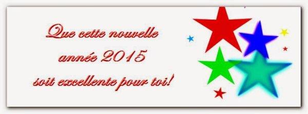 je vous souhaite une bonne année 2015