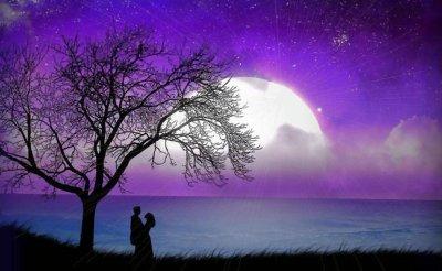 (L'amour est la sensation la plus merveilleuse du monde)