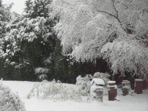 Tempête de Neige sur ma Normandie