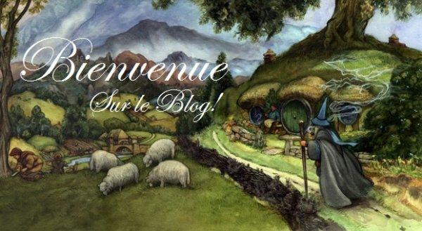 Bienvenu sur mon blog!