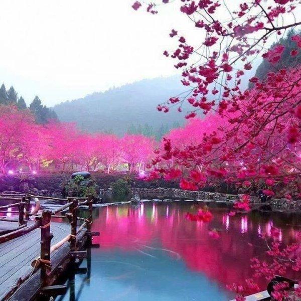 Je veux passer un séjour ici *_*