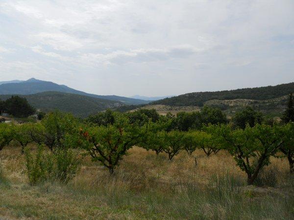 Drôme Provençale 2011 – étape 2