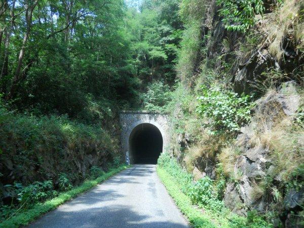 Tour de France 2012, étape 14 : Tarascon-en-Ariège – St Gaudens, suite