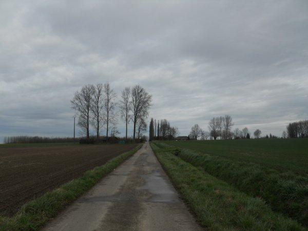 La Leubellienne 2013