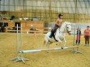Photo de xx-chevaux-hersin-xx