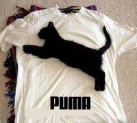 J'adore la marque Chat ... euh ... Puma j'veux dire loool