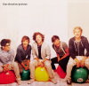 OneDirectionFiction-3