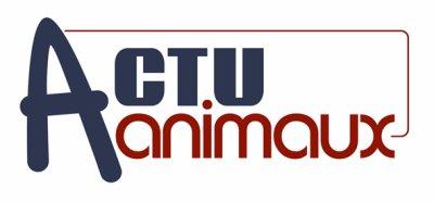 Bienvenue sur Actu-animaux.