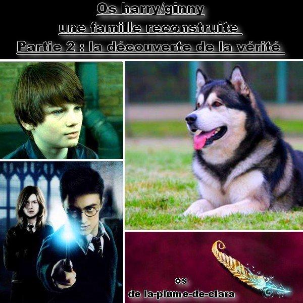 Os sur le couple Harry et Ginny Partie 2 : la découverte de la vérité :=)