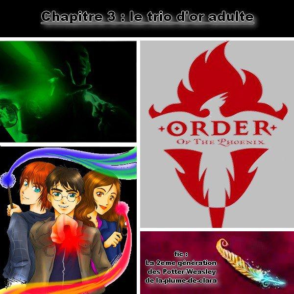 fic : la 2eme génération des Potter/weasley, chapitre 3 : le trio d'or adulte :=)