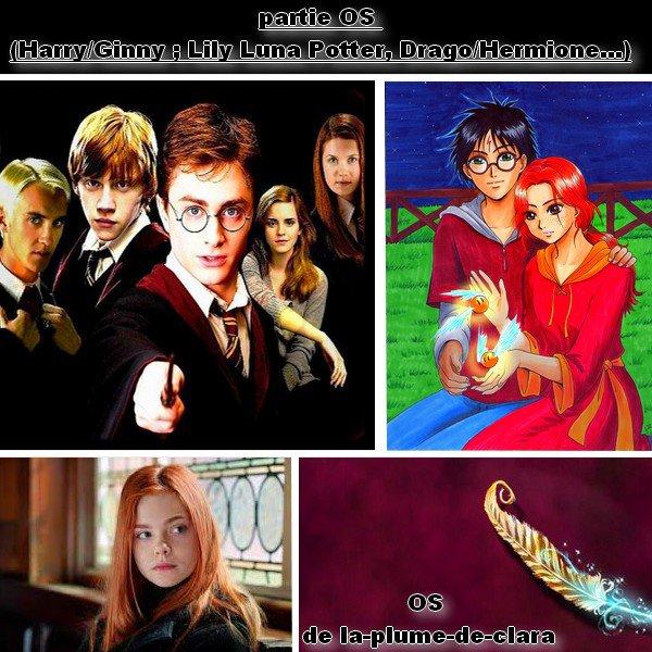 Partie 1 du blog : mes différent OS sur le monde Harry potter