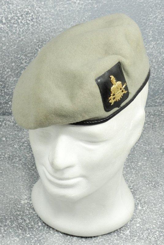 Belgian Beret Genie Grey