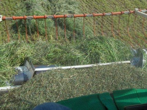 Ensilage d'herbe pendant mon stage en cuma