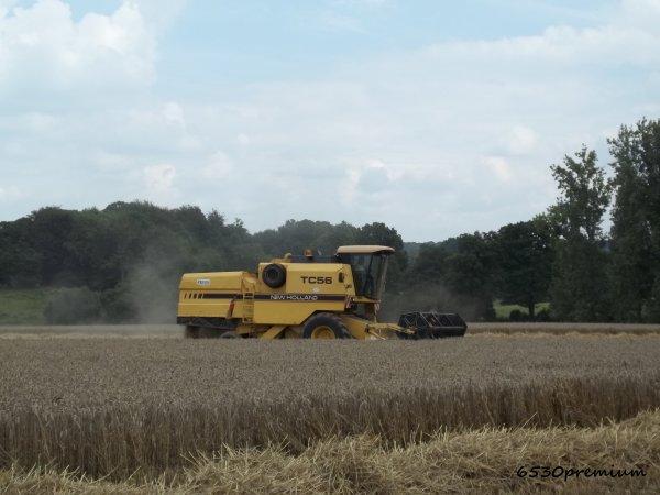 Moisson du blé 2011 ---> New Holland Tc 56