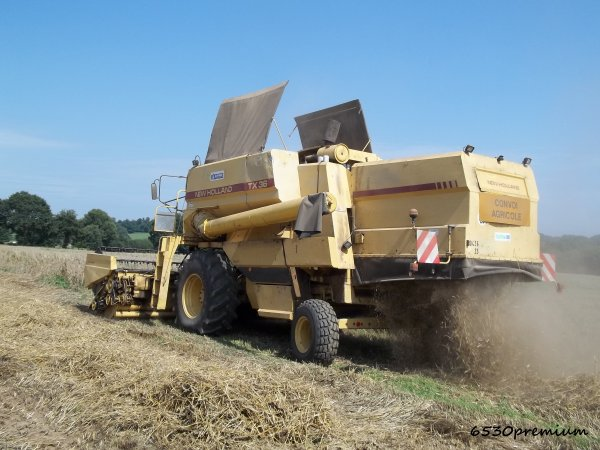 Moisson du blé 2011 ---> New Holland Tx 36