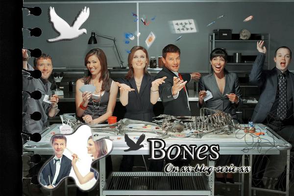 » Article 11 Bones