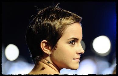 Les rédacteurs(éditeurs) à Reuters ont choisi une photo d'Emma de la première de Londres de Mortels Sanctifie comme une de leurs Images de l'Année pour 2010. De plus,   Emma aest arrivé 2 eme dans la Liste de Critiques Indépendante Annuelle des 100 Visages Célèbres les plus beaux. Classé *54 en 2006, Emma est depuis partie à 30 - 27 - 12 et maintenant 2.
