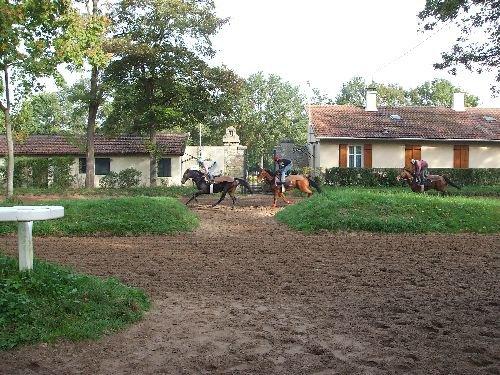 centre entrainement des chevaux de course a maison laffitte