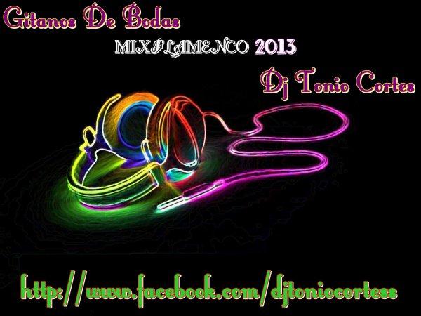 Gitano De Bodas MIXFLAMECO Dj Tonio Cortes 2013 (2012)