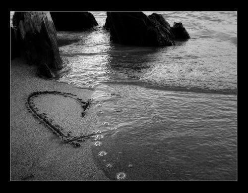 Ne cherche pas la personne la plus belle, mais la meilleure..Ne cherche pas celle qui dévoile son corps, mais celle qui te donne son coeur..Car un jour la beauté extérieure s'en ira mais la beauté du coeur grandira toujours..