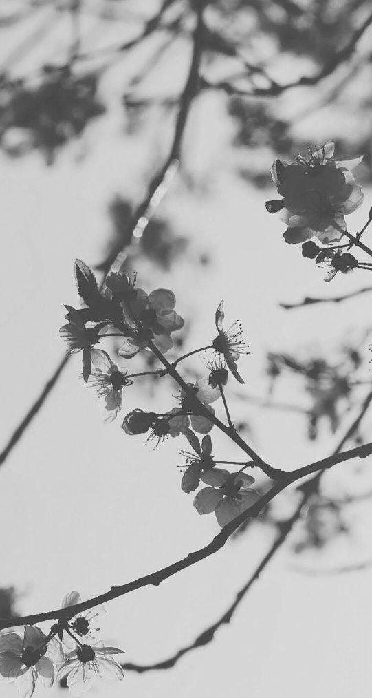 Le plus lourd fardeau, c'est d'exister sans vivre.