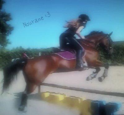 ~ L'équitation c'est bien plus qu'une passion ..   $) C'est ma Vie <3