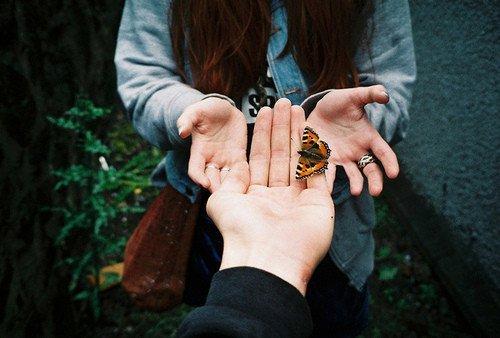 Même pour le simple envol d'un papillon tout le ciel est nécessaire. Paul Claudel