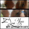 poney-gabounnet