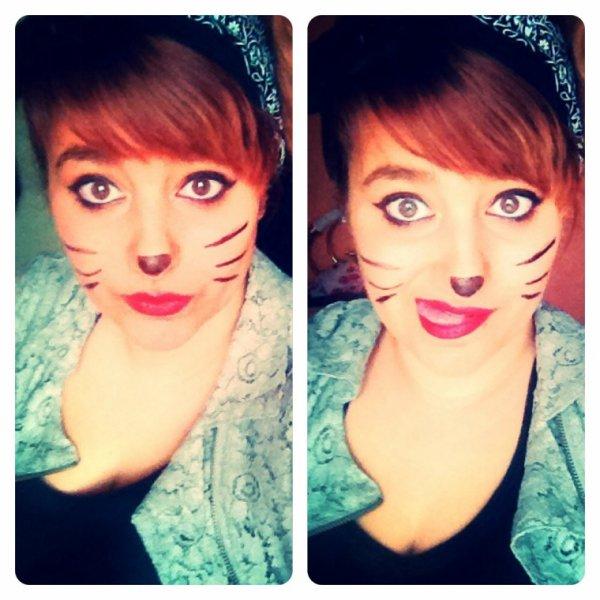 J'aurais aimé être un chat, Pour avoir cette vie, Et pouvoir te dire malgré tout ça, Ma préférée c'est celle-ci.