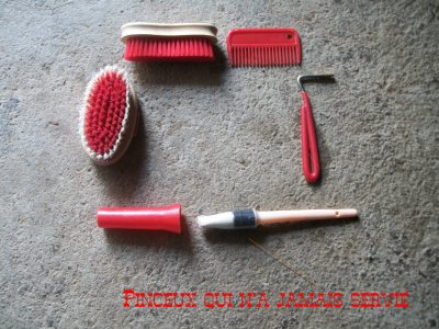 Brosses Rouges
