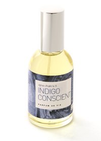 Indigo conscient  Analyser clairement