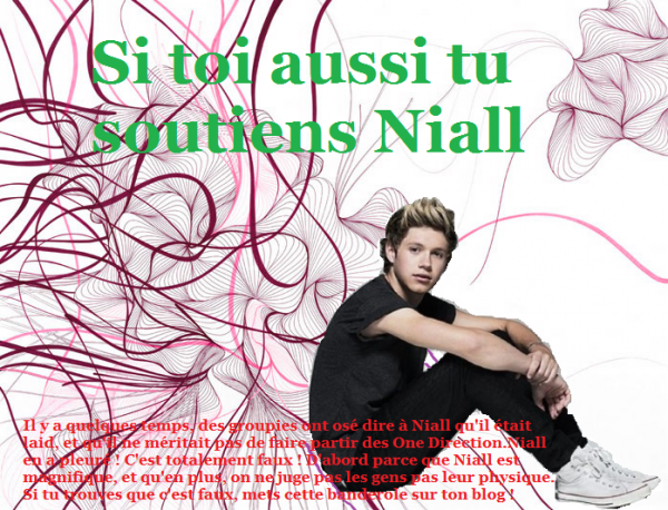 Soutenez Niall Horan